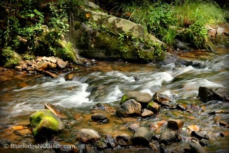 Hiking Trails: LAUREL CREEK, Mtn. CityTN